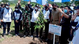 Aksi Tanam Pohon di Hari Air Dunia, Bupati Adnan: Mari Tanam Pohon Untuk Anak Cucu Kita
