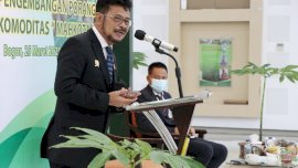 Mantap! Indonesia Peringkat 3 Penghasil Beras Terbesar di Dunia