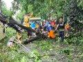 Cuaca Ekstrem, Posko Siaga Bencana di Gowa Standby 24 Jam, Begini Ajakan Bupati Adnan