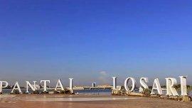 Penerbangan Internasional Bali Bakal Dibuka, Begini Dampaknya ke Makassar